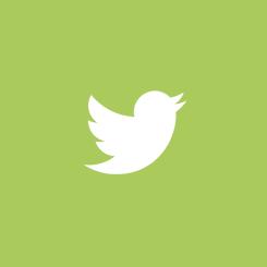 ГЛАВА 2: Twitter